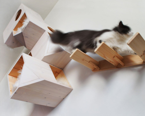 02-Cat-Tower-Wall