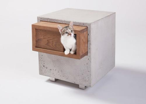 catsheltercover