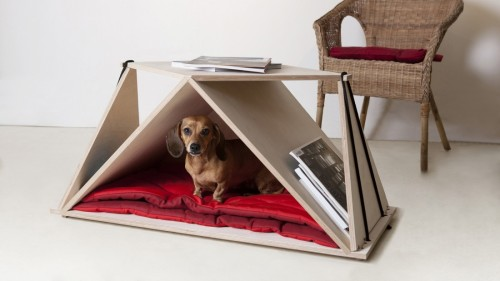 Pet Furniture Shoebox Dwelling Finding Comfort Style And
