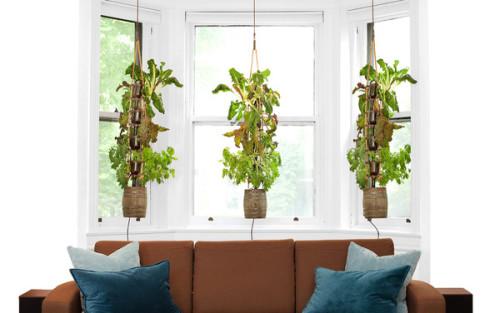 threesome-living-room-plain-Hi-res_2f4d104a-4f46-409f-9d89-a2ad6a51175b_grande